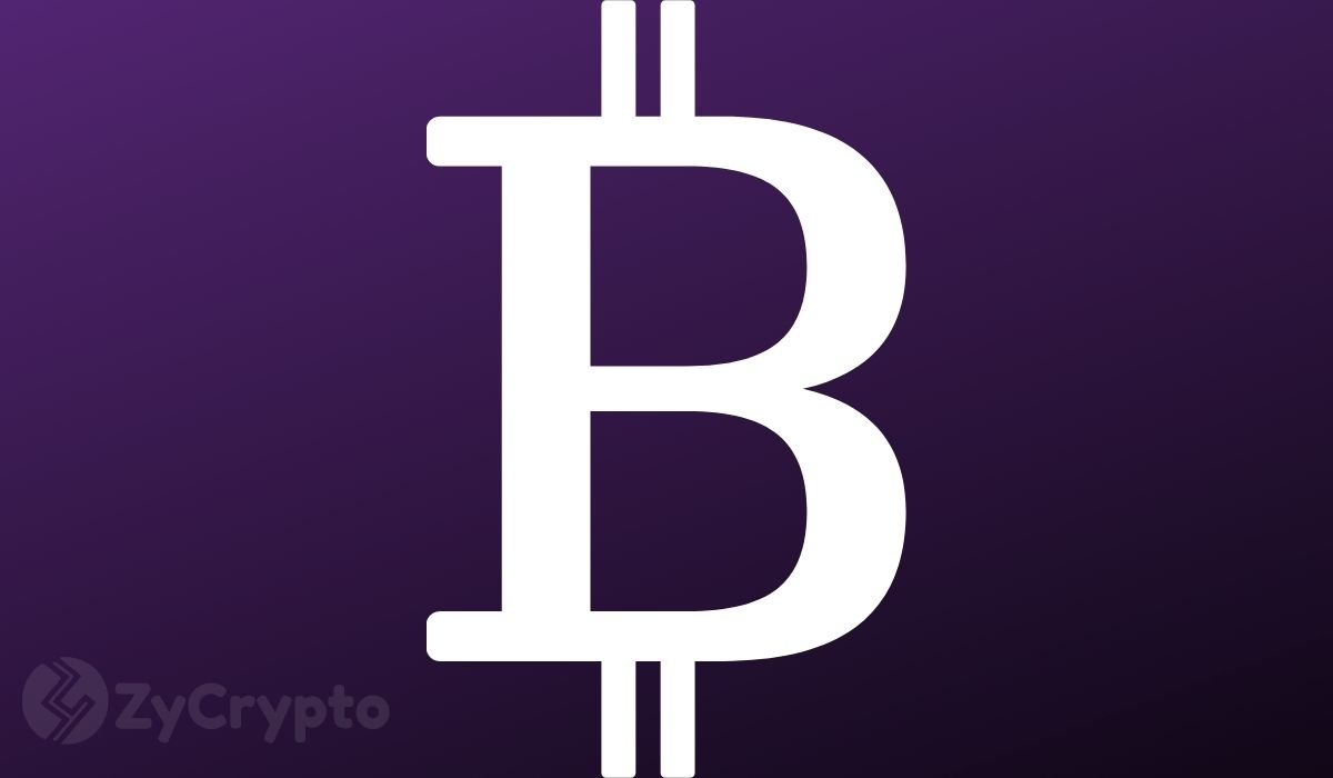 Twitter Stock Up 15% as Company Mulls Adding Bitcoin to Balance Sheet