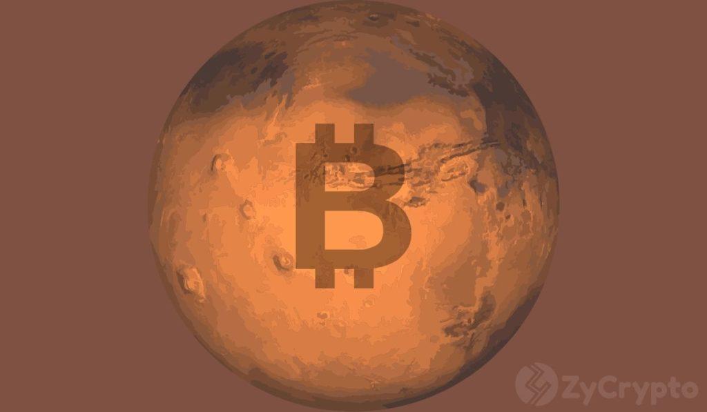 Bitcoin Will Go To Mars If Elon Musk Puts Tesla's Balance Sheet Into Bitcoin - Tyler Winklevoss Speculates