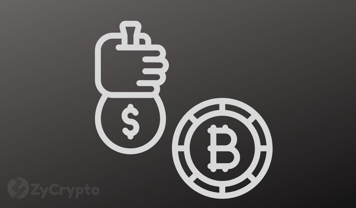 Wealth preservation will force Elon Musk to buy Bitcoin, pundits assert