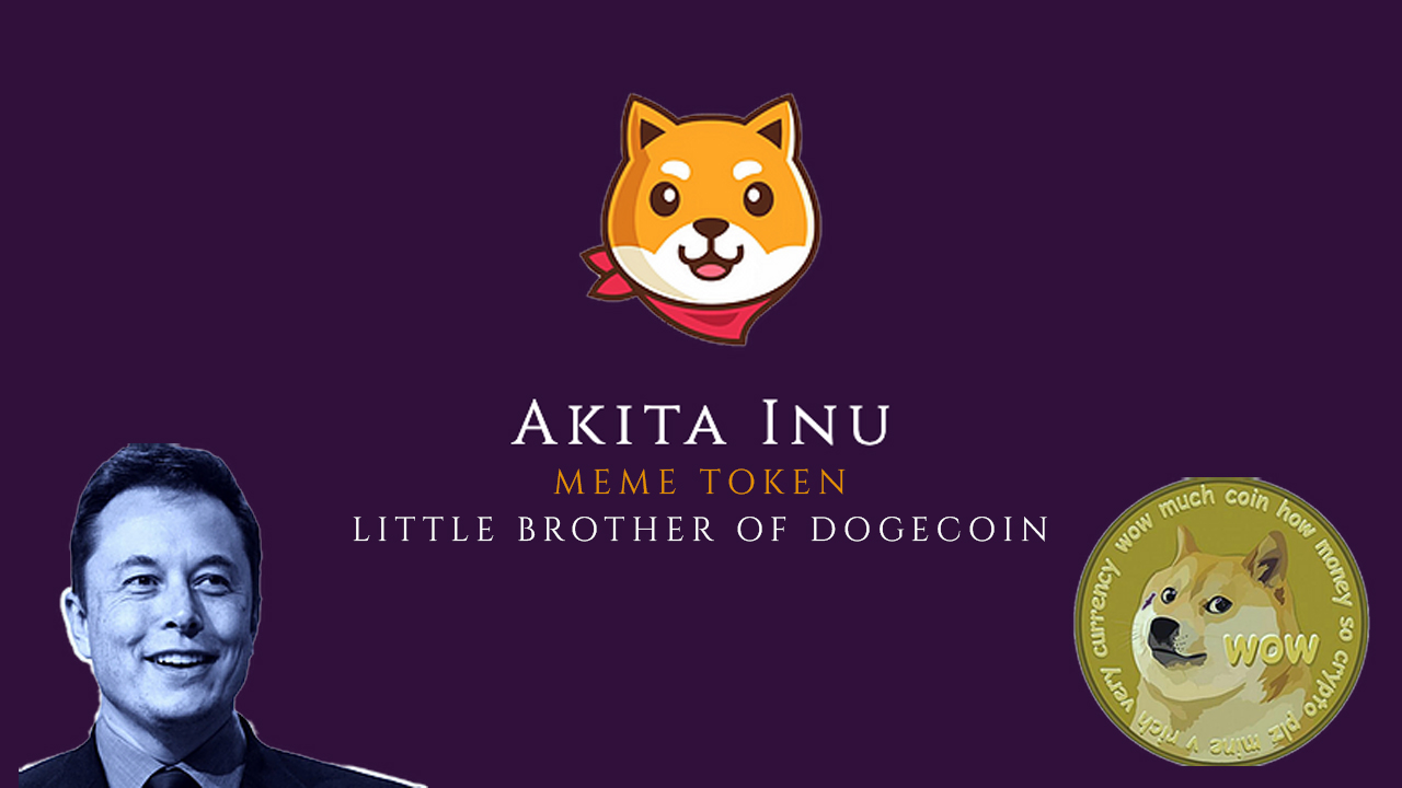 AKITA INU, The New Power To The Community Token