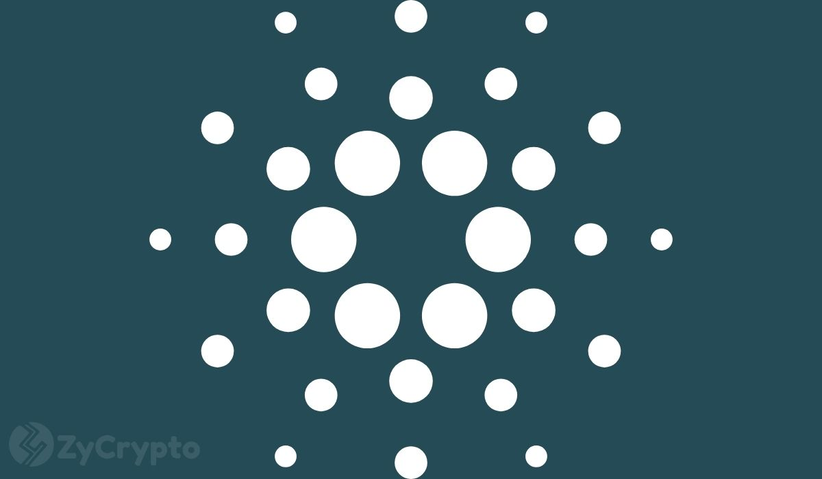 And The Best-Performing Cryptocurrency Of The Past Year Is… Cardano(ADA), With Incredible 3,290% Returns