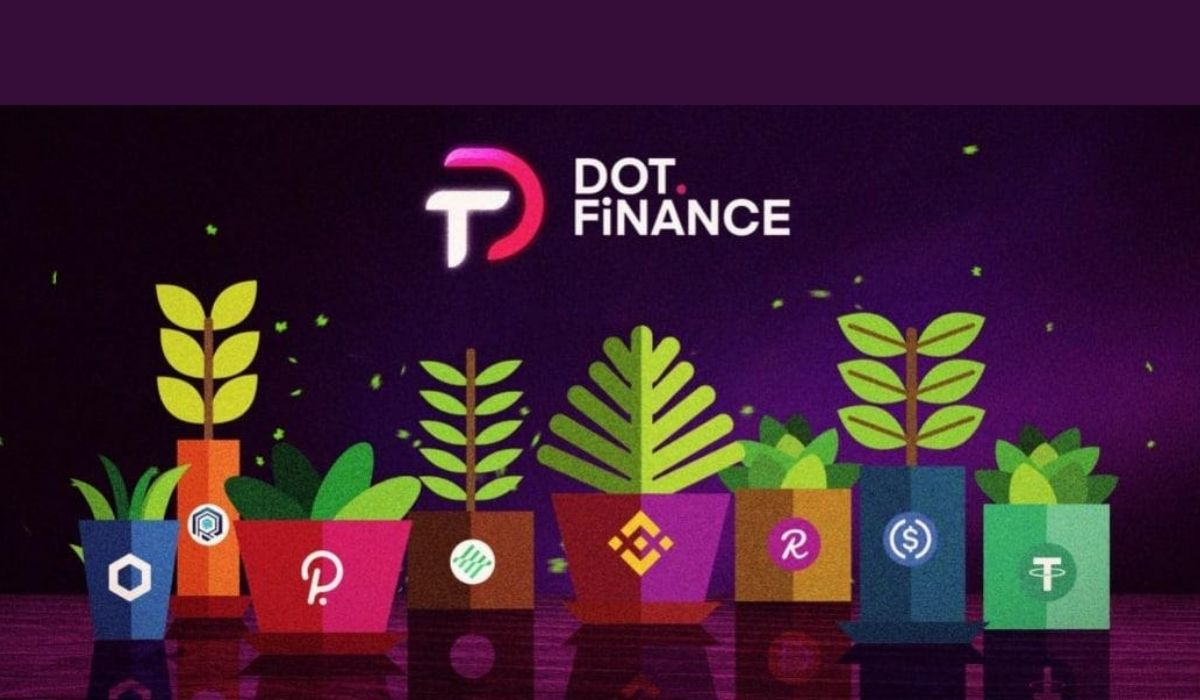 Dot.Finance: Listed on MXC, Adds New Maximizers And Staking Pool