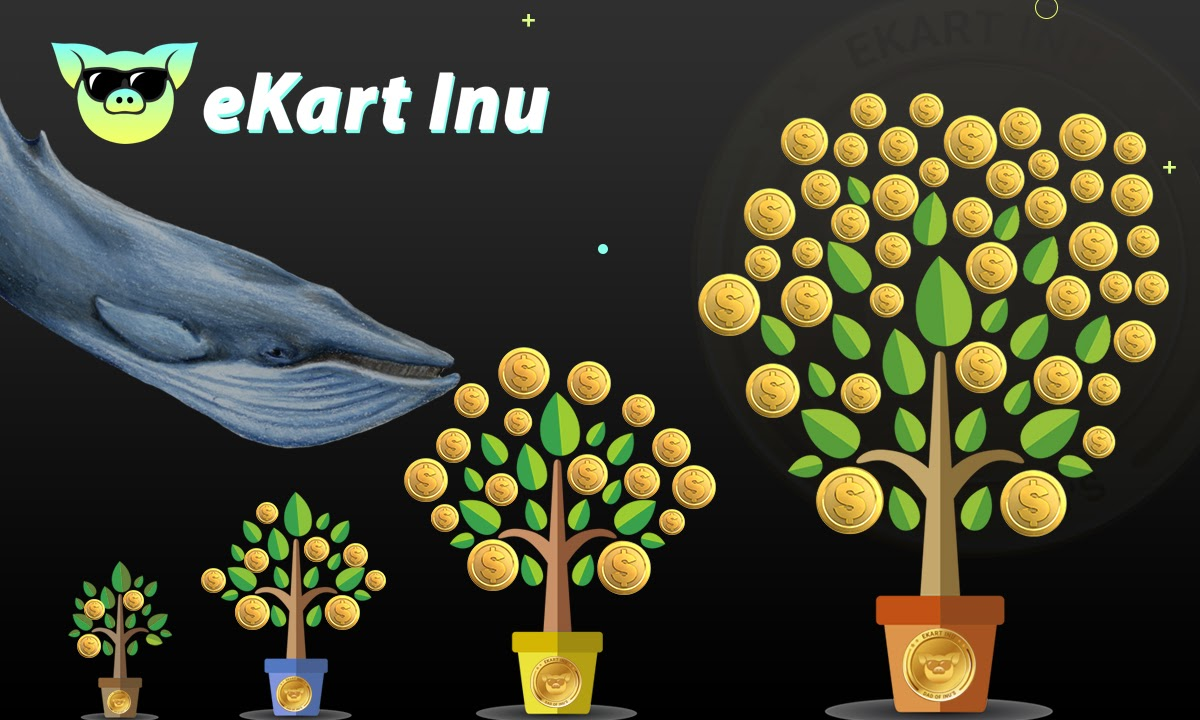Ekart Inu Holders Could Hit It Big Following Current Growth Trend