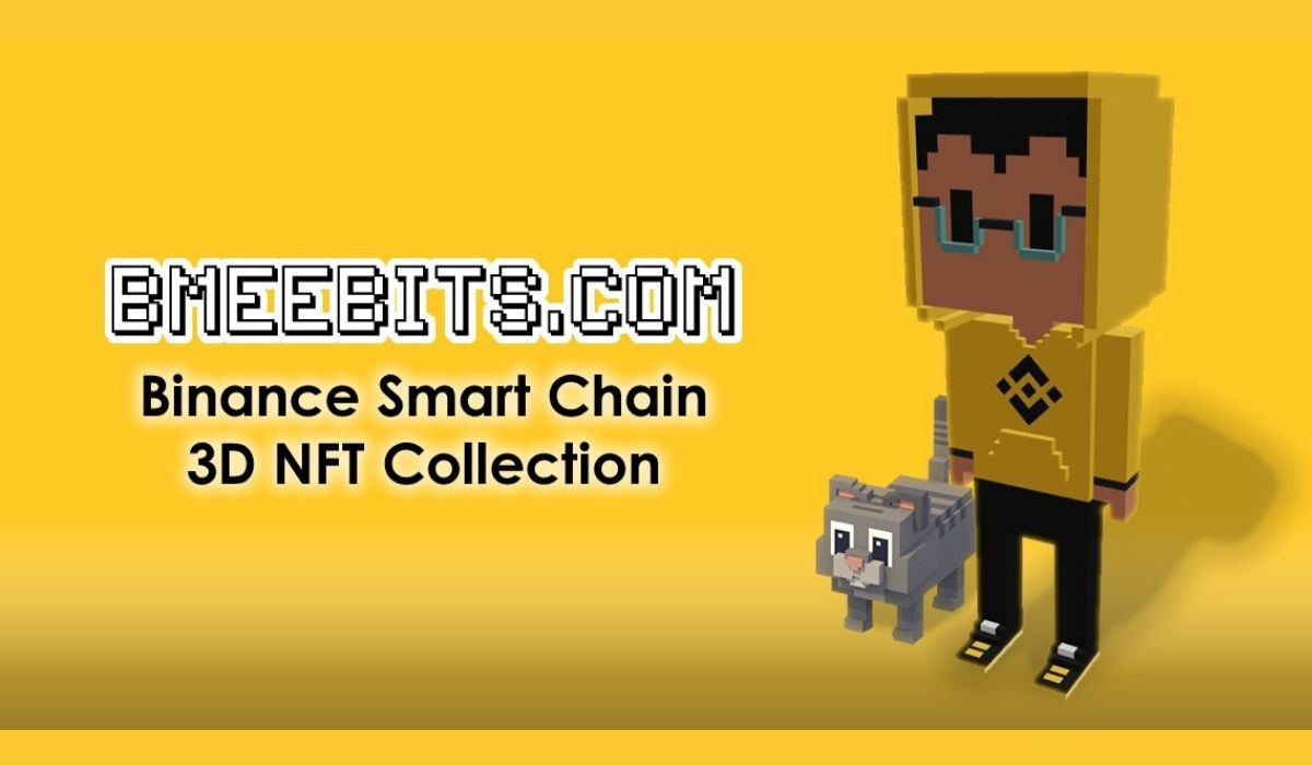 The BMeebits.com collection of 3D NFT models on the Binance Smart Chain was sold out in 12 hours