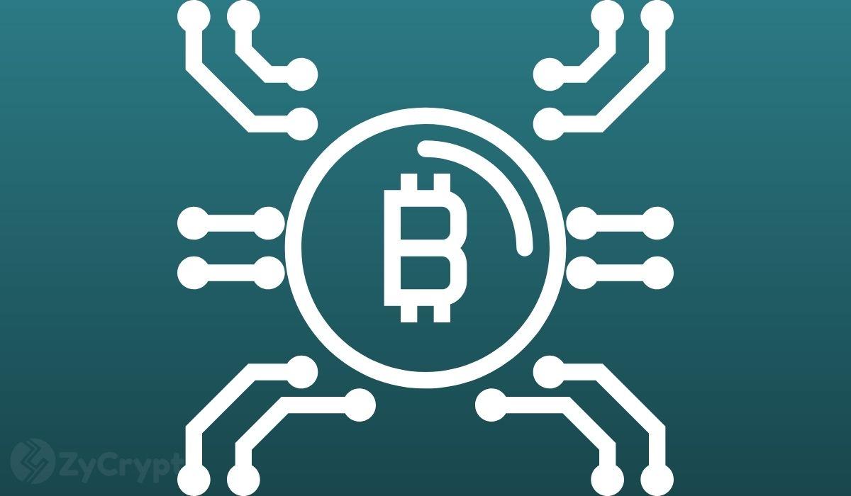Bitcoin Adoption: Who Will Do Better Among El Salvador, Tonga, and Brazil?
