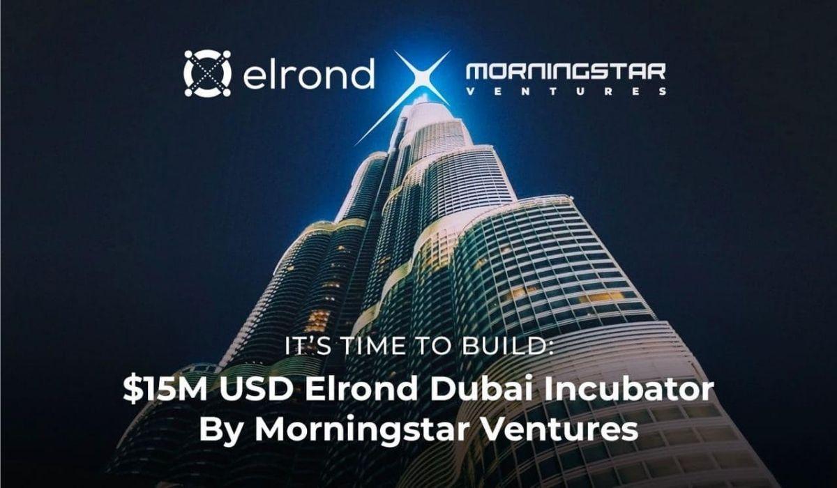 Morningstar Ventures anuncia un fondo de inversión de $ 15 millones para el ecosistema de Elrond