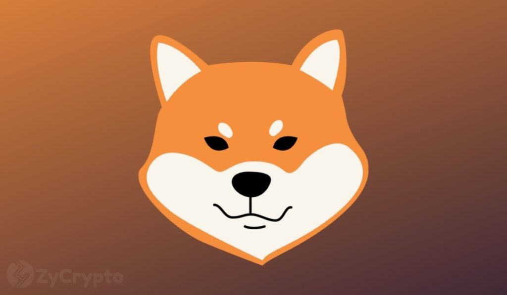Shiba Inu 'Has A Much Real Value As Bitcoin', Staunch Crypto Critic Peter Schiff Avers