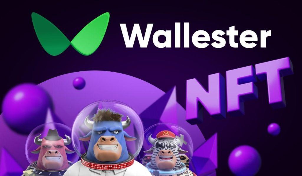 Visa's Estonian partner Wallester invests in NFT