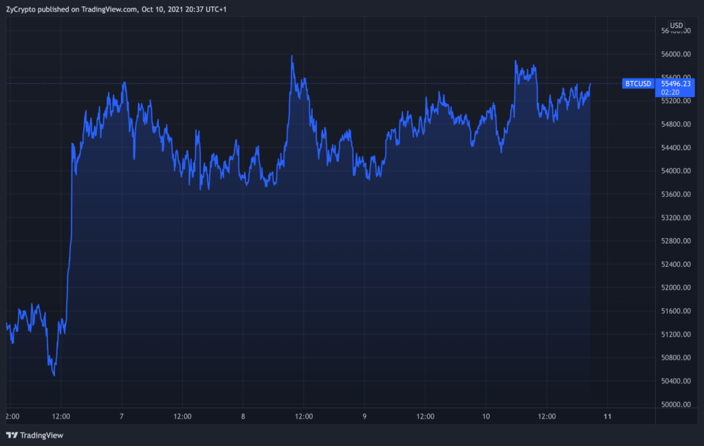 Bitcoin Long Term Holder Supply Shock Hits New High, Signaling New Trajectory For BTC Bulls